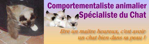 Comportementaliste animalier - Specialiste du Chat